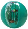 fish beach